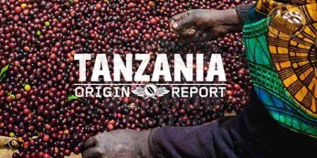 تاریخچه قهوه ی تانزانیا