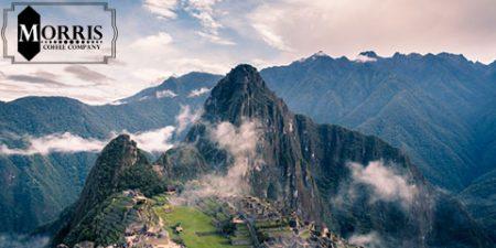 راهنمای پروفایلهای منطقهای قهوهی پرو