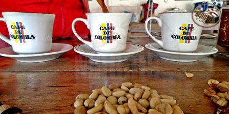 قهوهی کلمبیا ؛ از تولید و کشت تا طرز تهیه و دمآوری- قسمت دوم