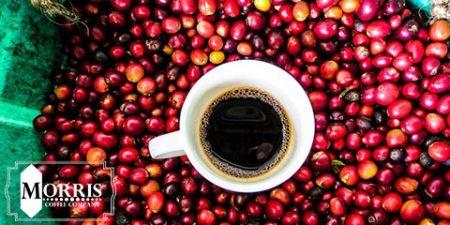 برنامه پیشرفت تولیدکنندگان در بخش قهوه کلمبیا