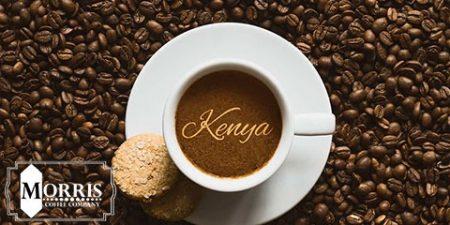 قهوه کنیا AA SL-28 چیست؟ – قسمت نخست
