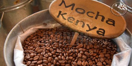 دانه قهوه کنیا دانهای اسپیشیالیتی با اسیدیته ای قدرتمند