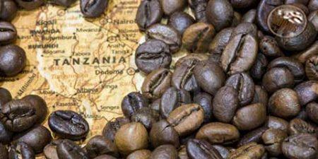 ویژگیهای قهوه تانزانیا کلیمانجارو