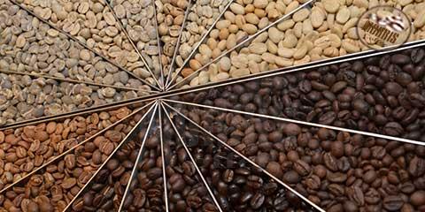 برشته کاری قهوه