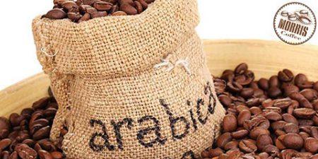 واژه نامه قهوه: سبد پرتافیلتر Basket
