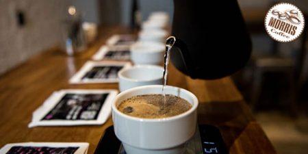 مسئولیتپذیری قهوه آزمایی در طول کووید 19