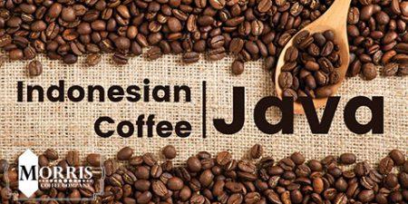 واژگان قهوه: سازمان بینالمللی قهوه (ICO)
