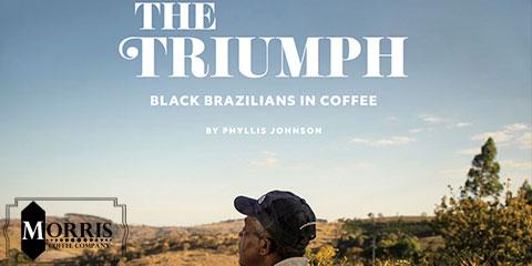 برزیلیهای سیاه قهوه